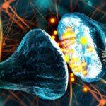 ТОП-10 способностей мозга, которые наука не может оспорить