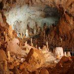 Международная группа учёных раскрыла убийство, совершенное тридцать три тысячи лет назад
